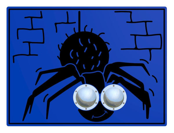 Bug Eyes Spider Play Panel