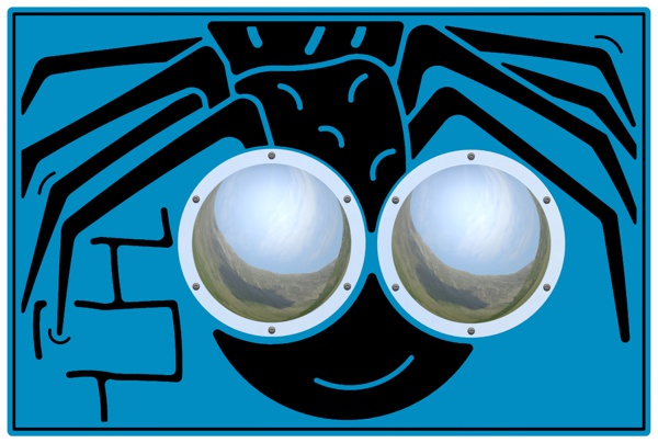 Zoom Bug Eyes Spider Play Panel